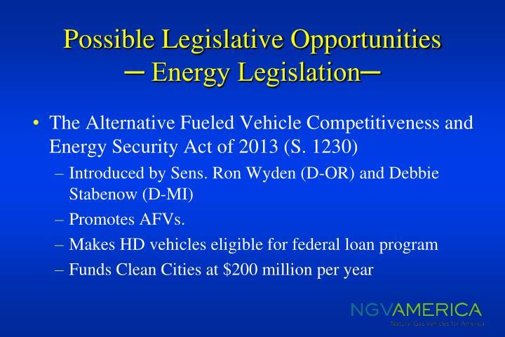 Possible Legislative Opportunities