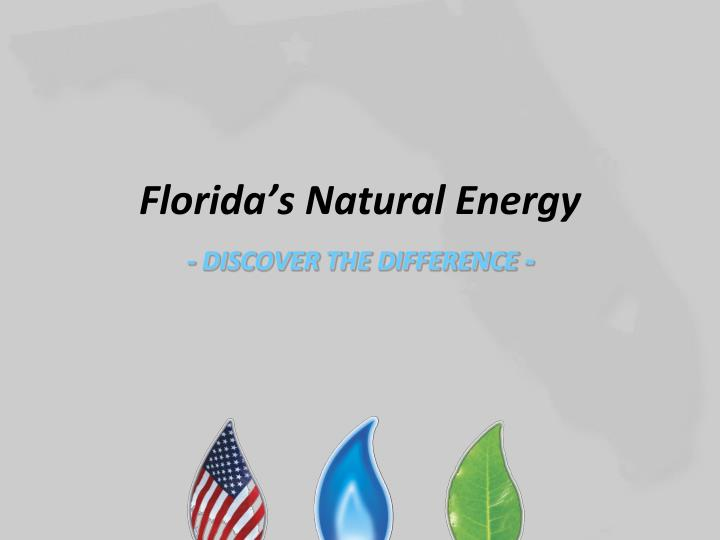 florida s natural energy discover the difference n.