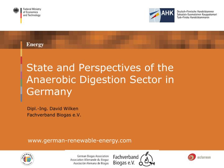 state and perspectives of the anaerobic digestion sector in germany n.