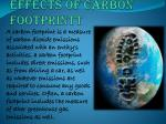 effects of carbon footprintt