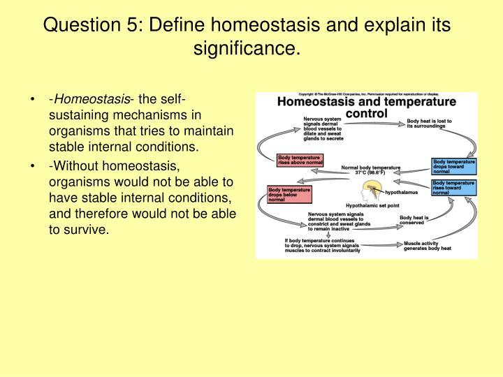 Define Homeostasis Anatomy Gallery - human anatomy diagram organs