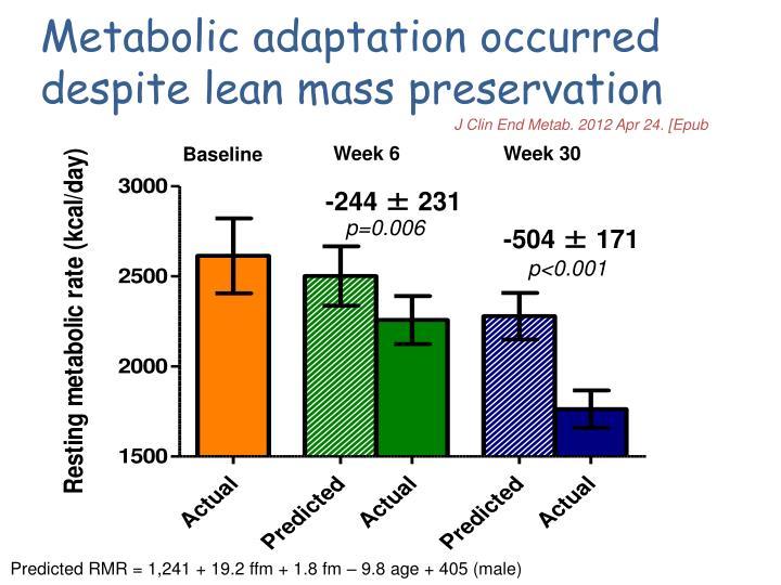 Metabolic adaptation occurred despite lean mass preservation