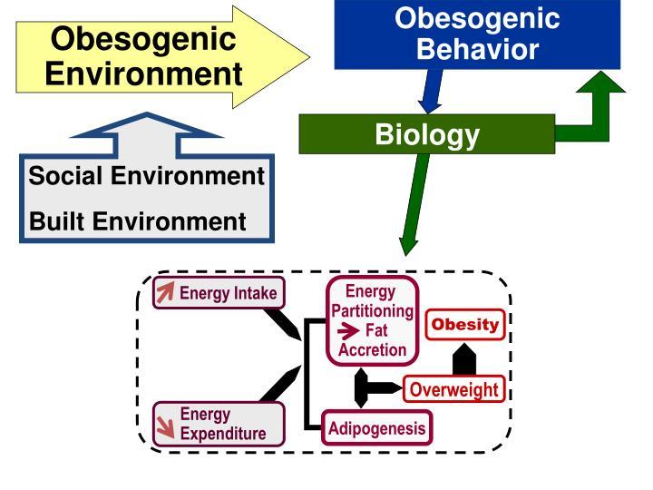 Obesogenic Behavior
