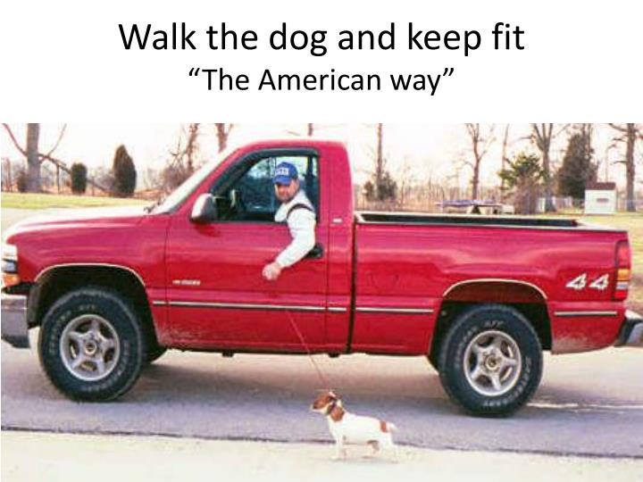 Walk the dog and keep fit