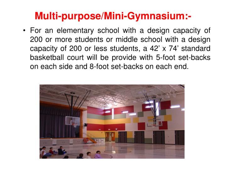 Multi-purpose/Mini-Gymnasium:-