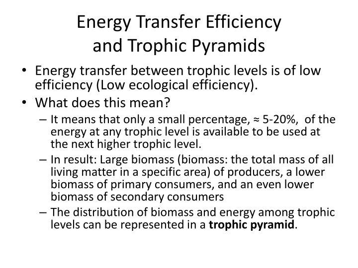 Energy Transfer Efficiency