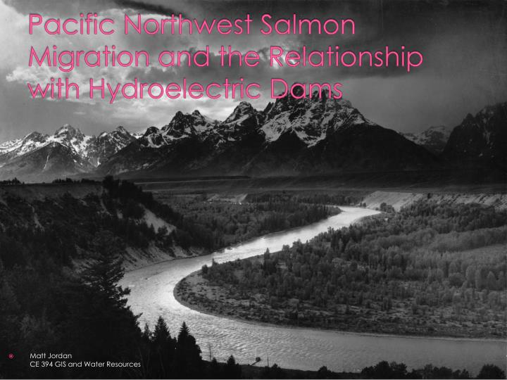 pacific northwest salmon migration and the relationship with hydroelectric dams n.