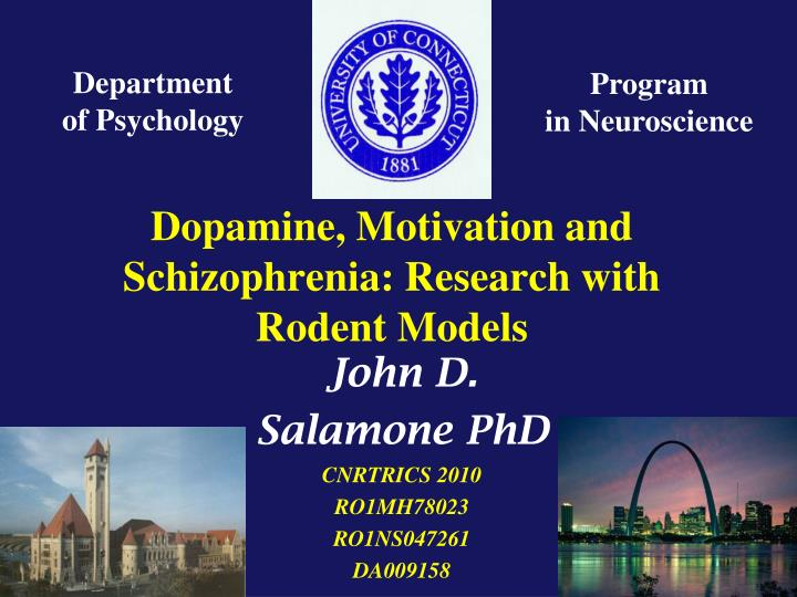 dopamine motivation and schizophrenia research with rodent models n.