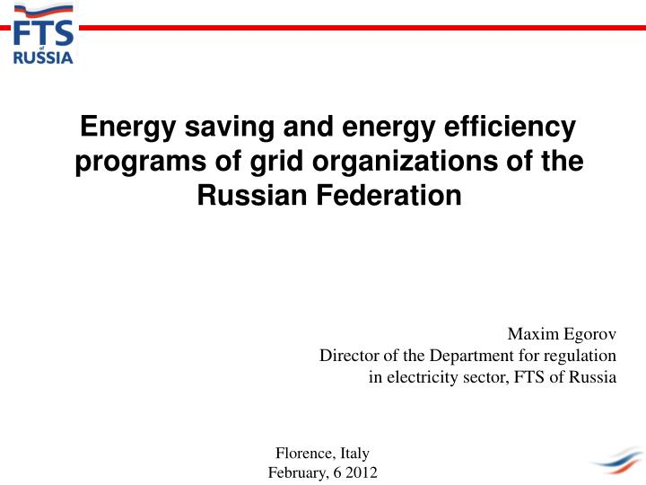 energy saving and energy efficiency programs of grid organizations of the russian federation n.