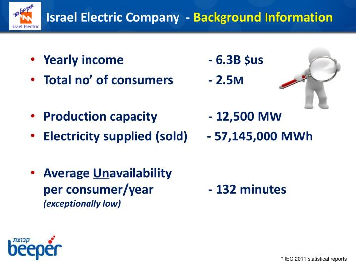Israel electric company background information