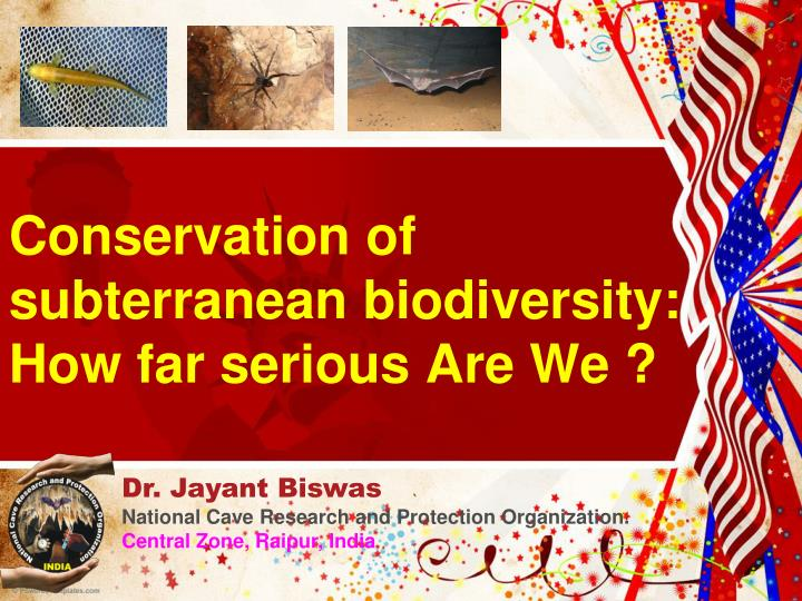 conservation of subterranean biodiversity how far serious are we n.