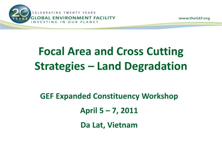 focal area and cross cutting strategies land degradation n.