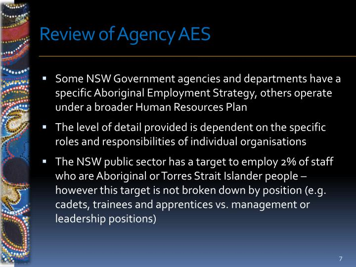 Review of Agency AES