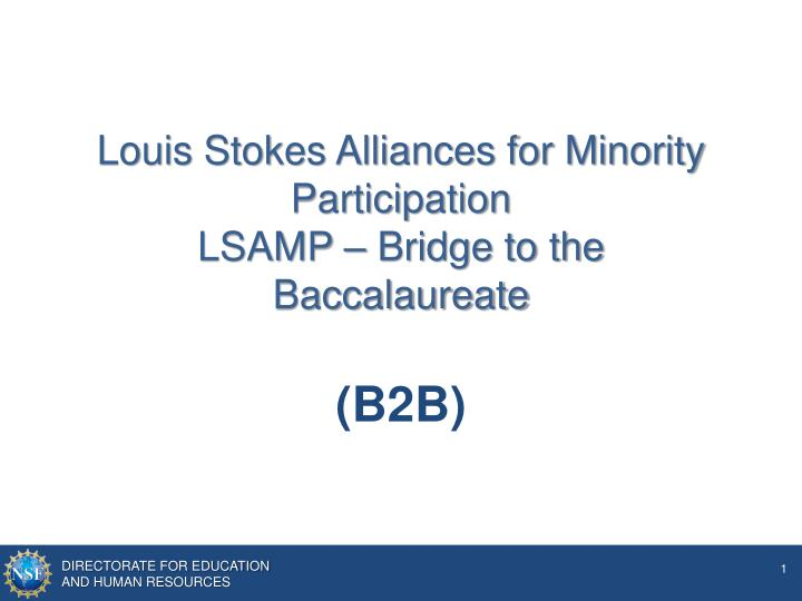 louis stokes alliances for minority participation lsamp bridge to the baccalaureate n.