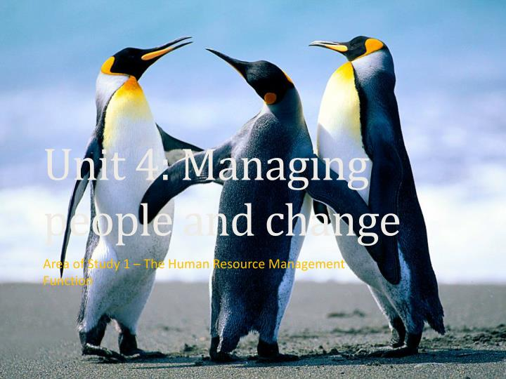 unit 4 managing people and change n.