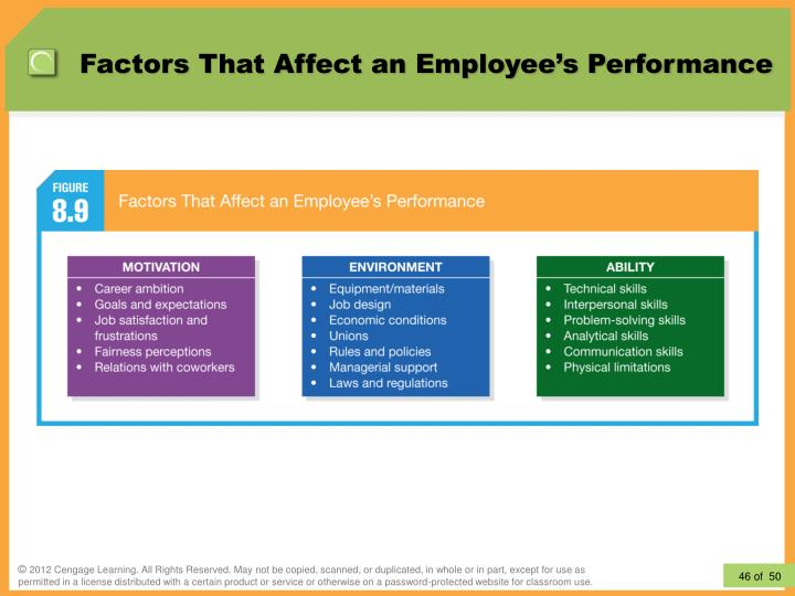 Factors That Affect an Employee's Performance