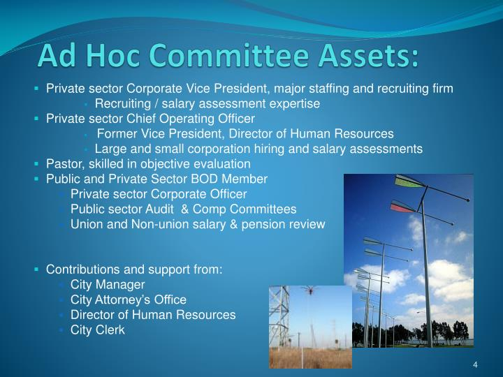 Ad Hoc Committee Assets: