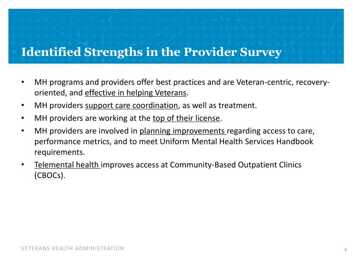 Identified Strengths in the Provider Survey