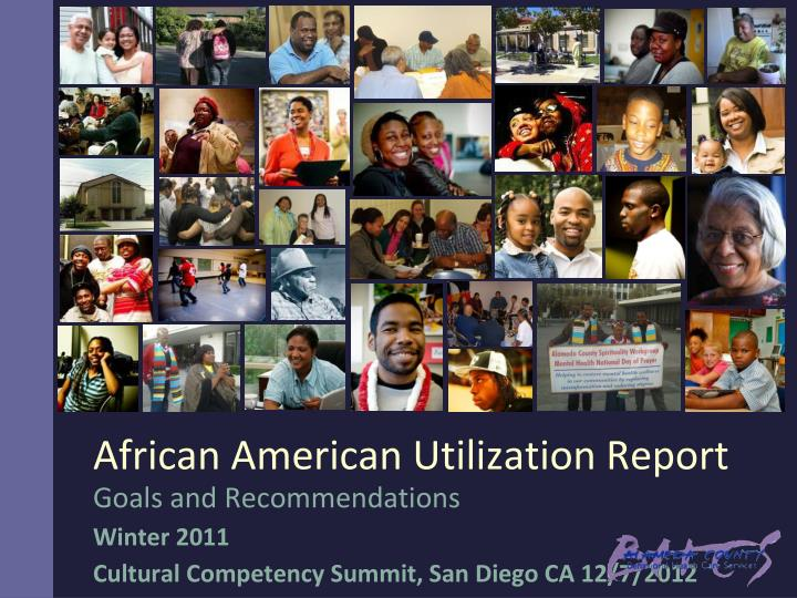 goals and recommendations winter 2011 cultural competency summit san diego ca 12 7 2012 n.