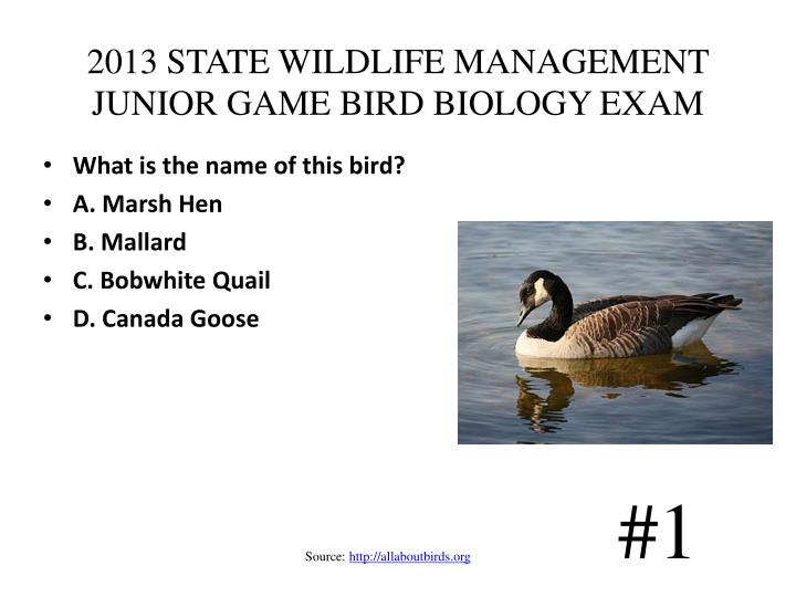 2013 state wildlife management junior game bird biology exam n.
