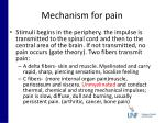 mechanism for pain