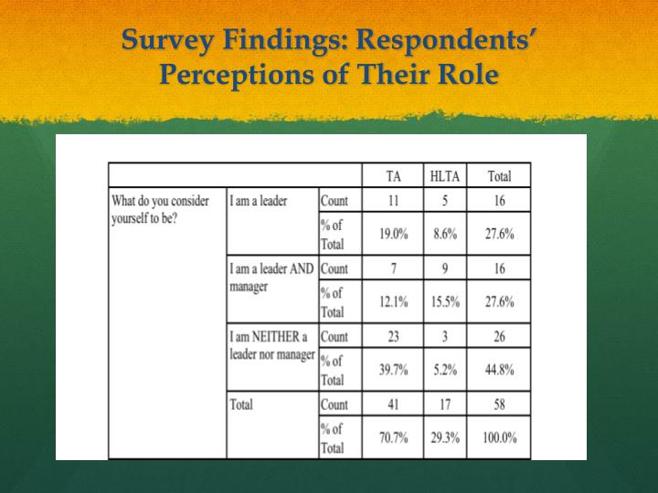 Survey Findings: Respondents' Perceptions of Their Role