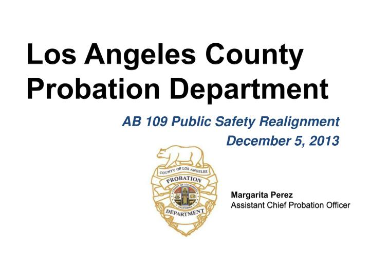 los angeles county probation department n.
