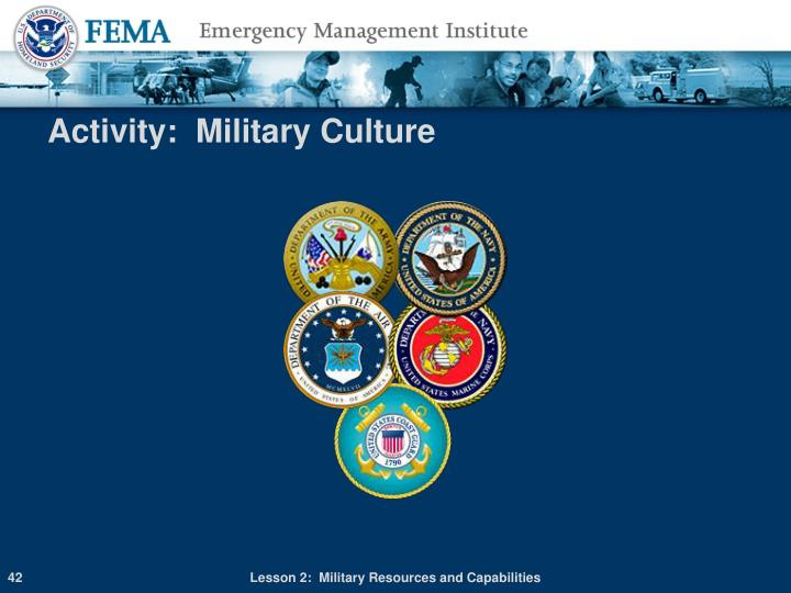 Activity:  Military Culture