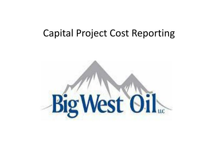 capital project cost reporting n.