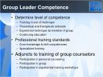 group leader competence