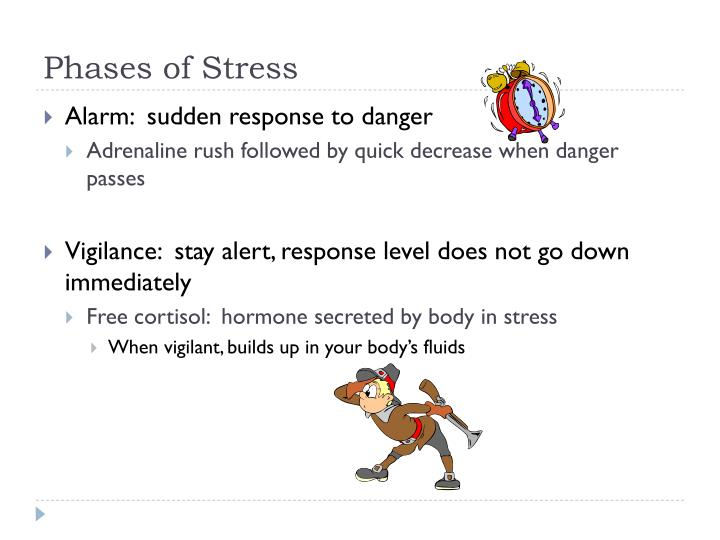 Phases of stress