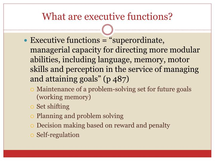 What are executive functions?