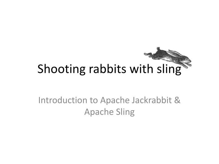 shooting rabbits with sling n.