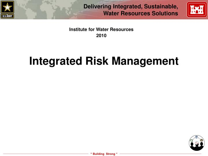 integrated risk management n.