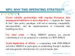 wp5 why this operating strategy