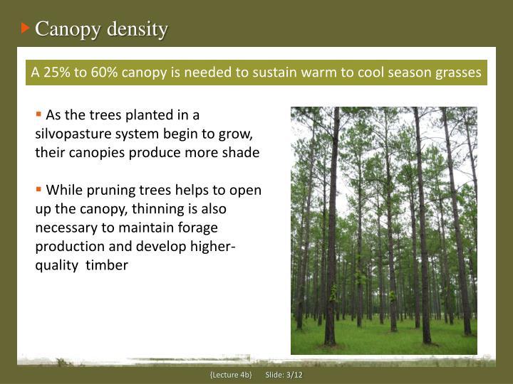 Canopy density