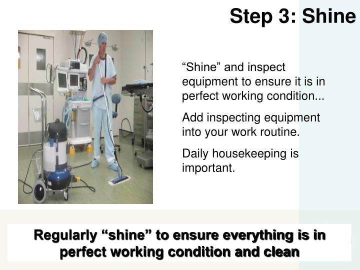 Step 3: Shine