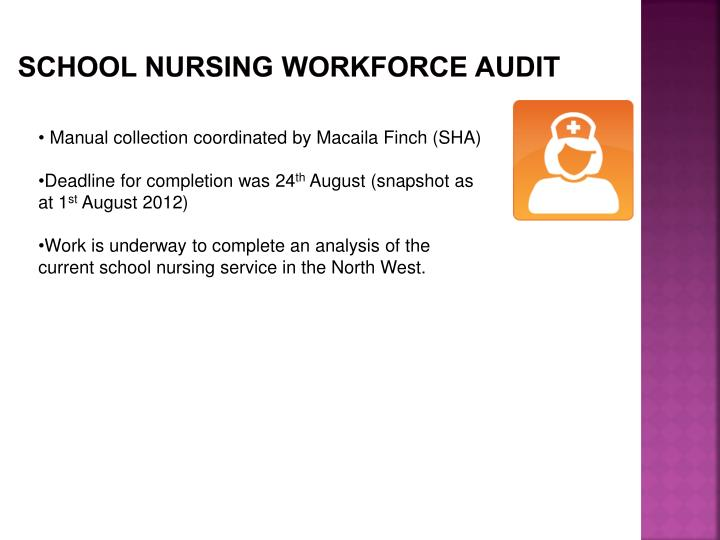 SCHOOL NURSING WORKFORCE AUDIT