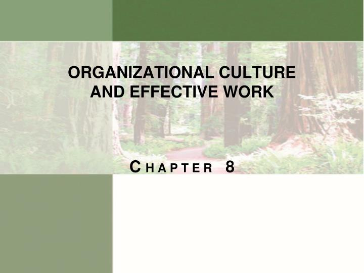 organizational culture and effective work n.