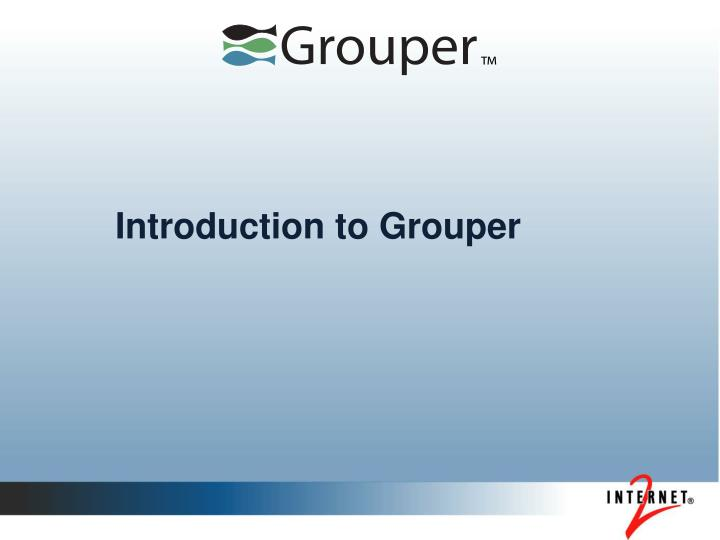 introduction to grouper n.