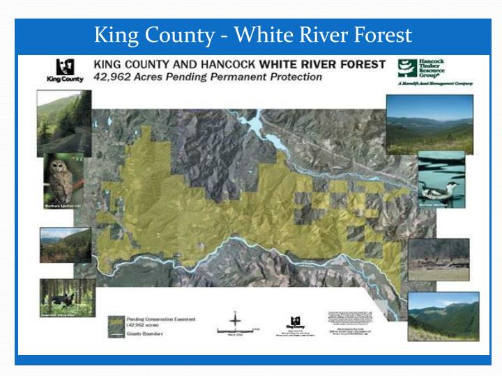 King County - White River Forest