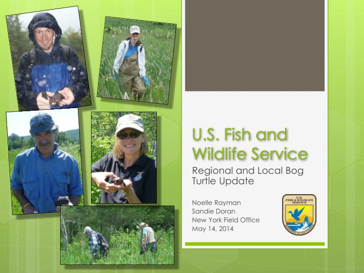 u s fish and wildlife service n.