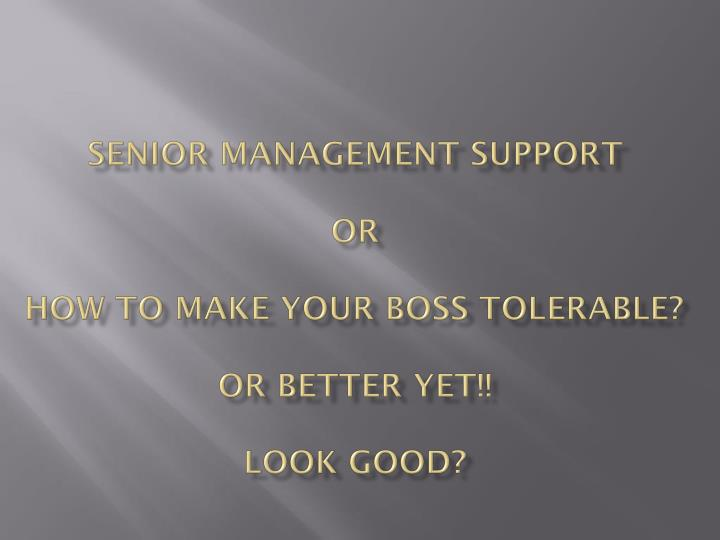 senior management support or how to make your boss tolerable or better yet look good n.