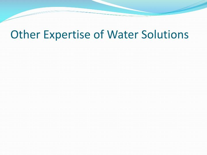 Other Expertise of Water Solutions