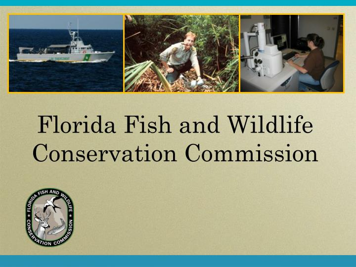 florida fish and wildlife conservation commission n.