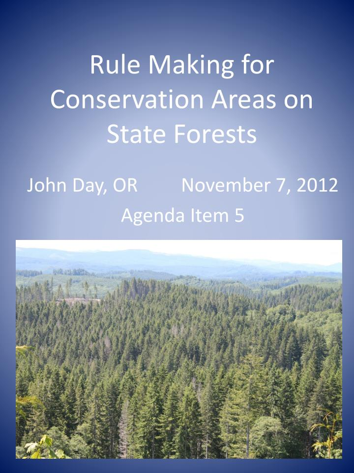 rule making for conservation areas on state forests n.