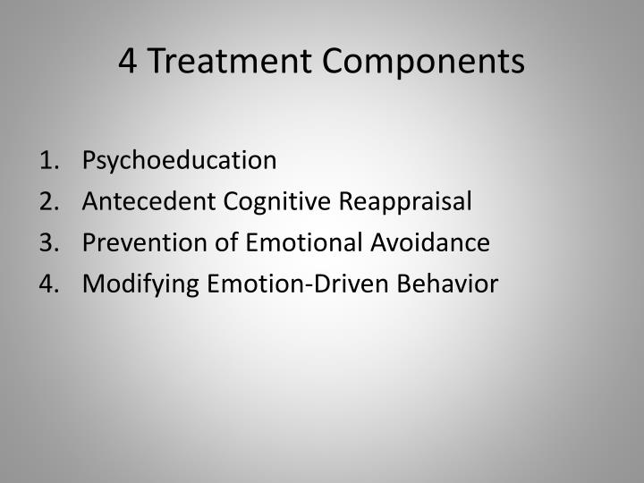 4 Treatment Components