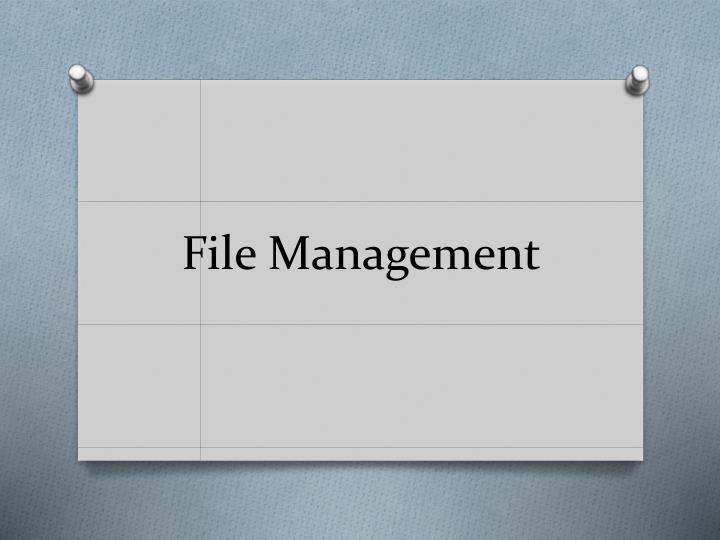 file management n.