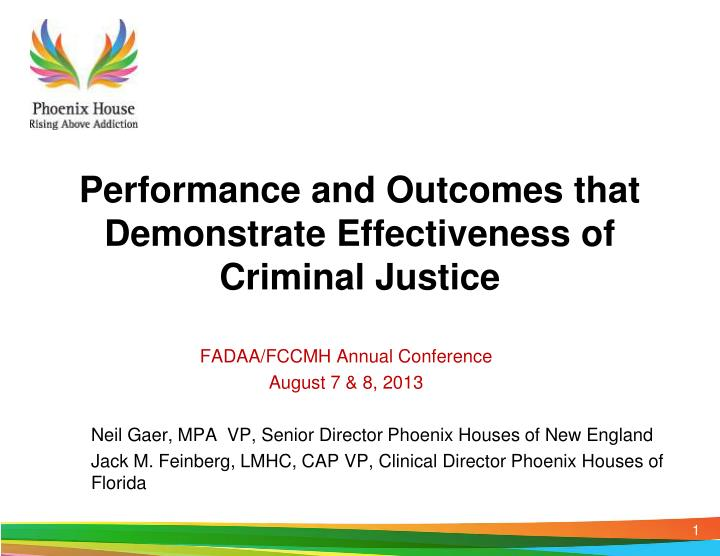 performance and outcomes that demonstrate effectiveness of criminal justice n.