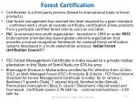 forest certification